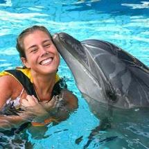 dolphin-park
